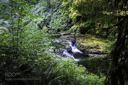 Stream Below the Upper North Falls