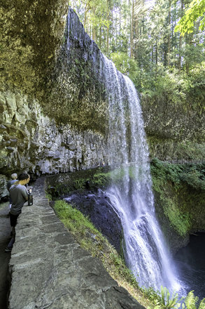silver falls state park 3