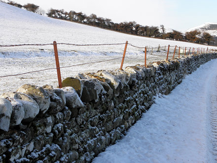 Snowy wall and fence
