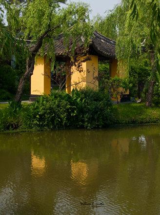 Walk through Slender West Lake Park