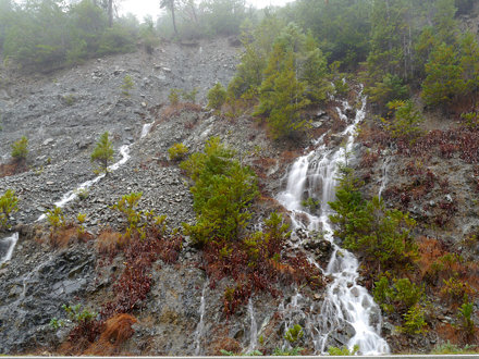 South Fork - Darlingtonia Falls