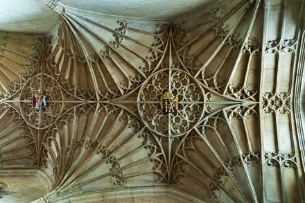 St David's Cathedral: Trinity Chapel vault