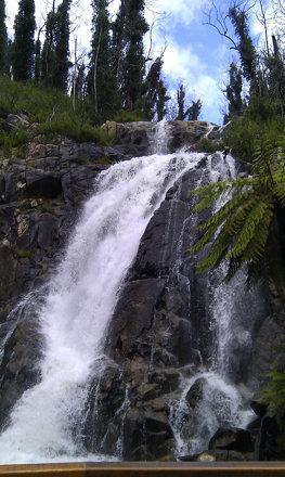 Steavenson Falls - HTC Desire