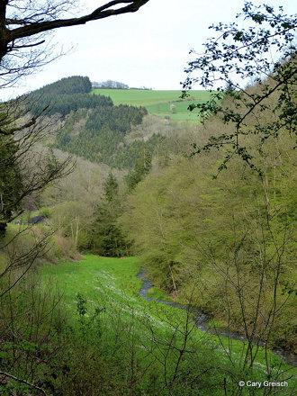D'Ammeschterbaach bei Stolzebuerg (2012-04-28 -27)