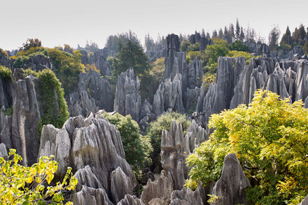 views of stone forest, Shilin, Yunnan, CN, 2011-11-14 (164 of 156).jpg