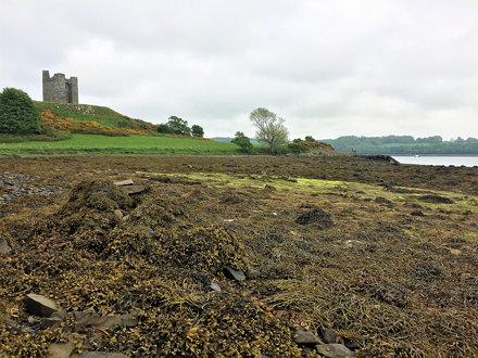 Audley Castle overlooks Strangford Lough