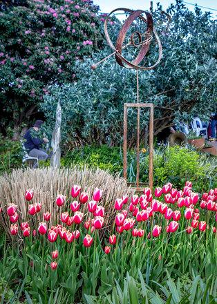 Silvan Tulip Festival-40