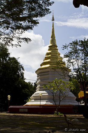 Chedi - Wat Phrathat Doi Jom Thong 4670