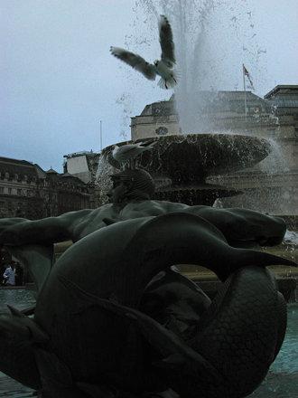 Trafalgar 3