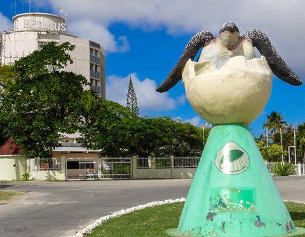Turtle conservation statue.