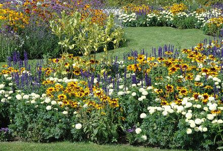 2010.08.22.172 VAUX-le-VICOMTE - Jardin fleuri