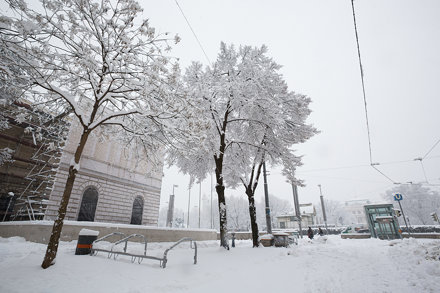 vienna-jquery-europe_23.02.2013_078
