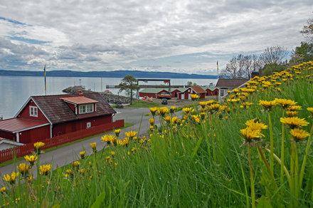 2010-05-22 06-05 Schweden 0314 Visingsö