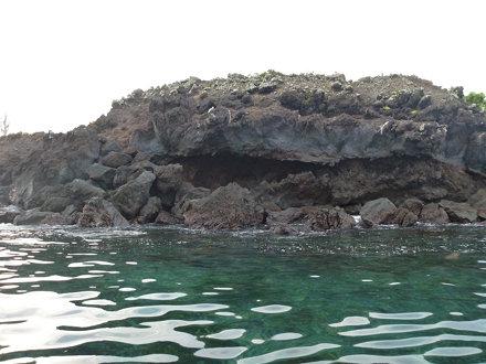 Punta Albemarle, Isabela Island, Galapagos