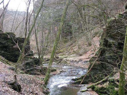 Hunsrückhöhenweg 2013 - Baybachtal