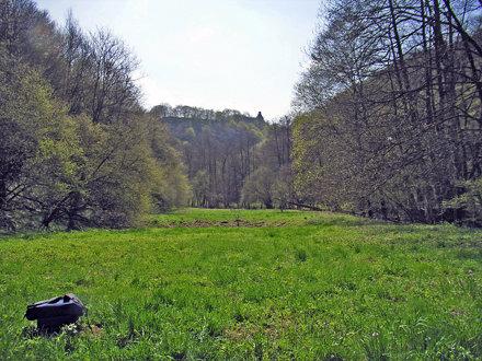 2006-04 Hunsrück 47