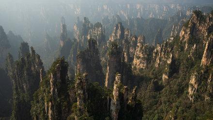 Among Standing Giants - Zhangjiajie - China