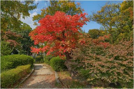 Osaka Castle gardens.04b
