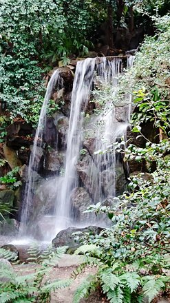 Waterfall Water Nature Stream - Flowing Water Outdoors