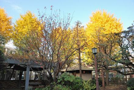 Nanushi-no-Taki Park Entrance
